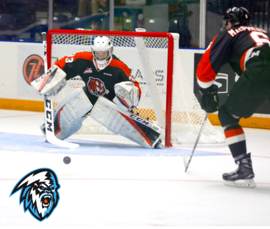 WHL: ICE swap pick for Tigers' netminder McGovern
