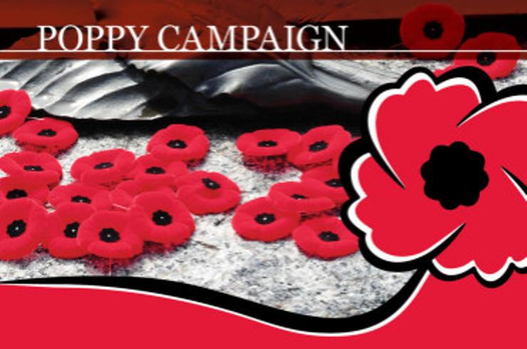 Cranbrook Legion kicks off poppy campaign