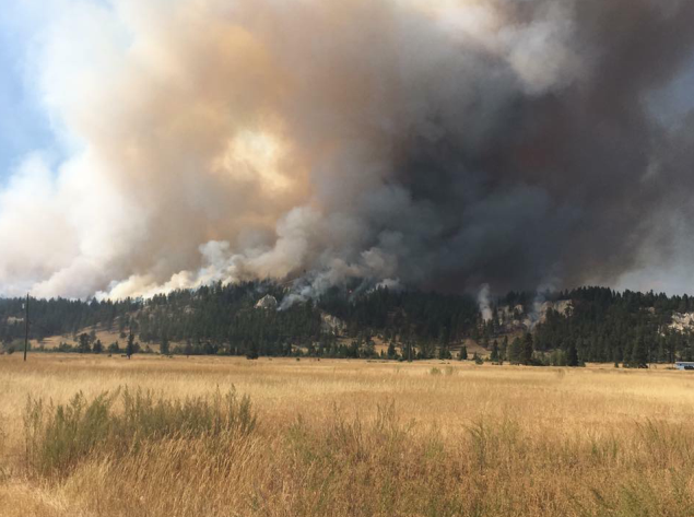 East Kootenay communities receive over $408k for wildfire initiatives