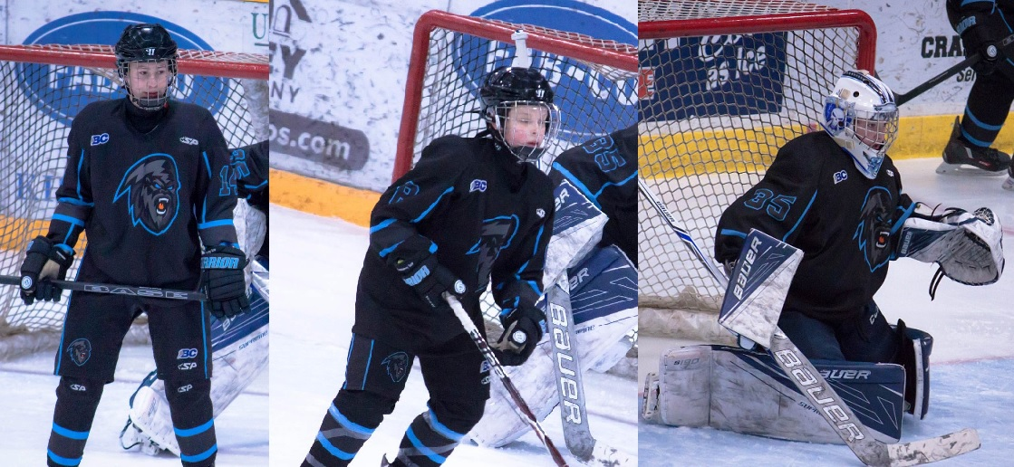 Three local hockey players selected for U-15 provincial tourney