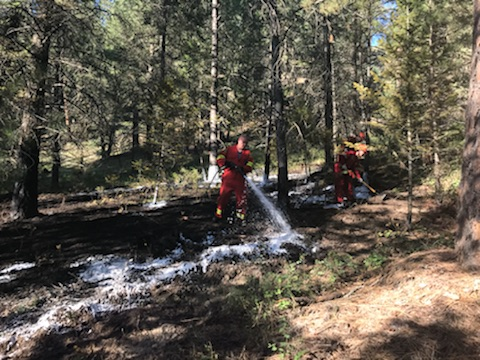 Campground staff and campers help extinguish wildfire near Baynes Lake
