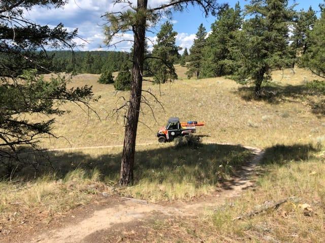 Cranbrook SAR retrieves injured hiker off Eager Hill