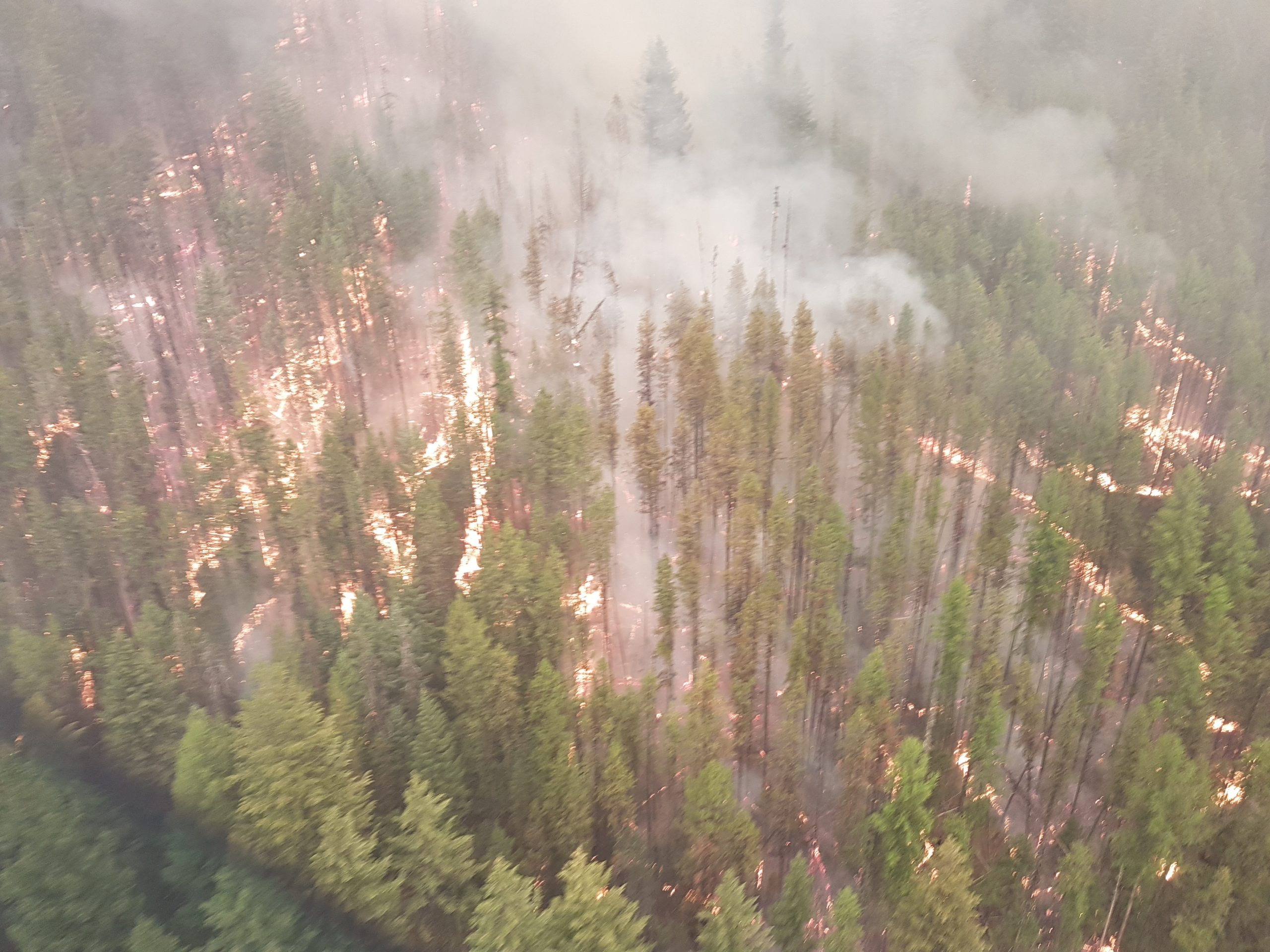 Fire crews confident with progress made on Meachen Creek fire
