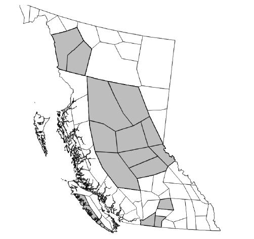Kootenay region no longer under Smoky Skies Bulletin