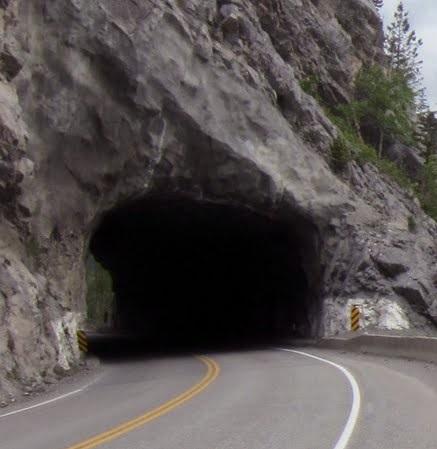 Eight cows dead following crash at Elko Tunnel