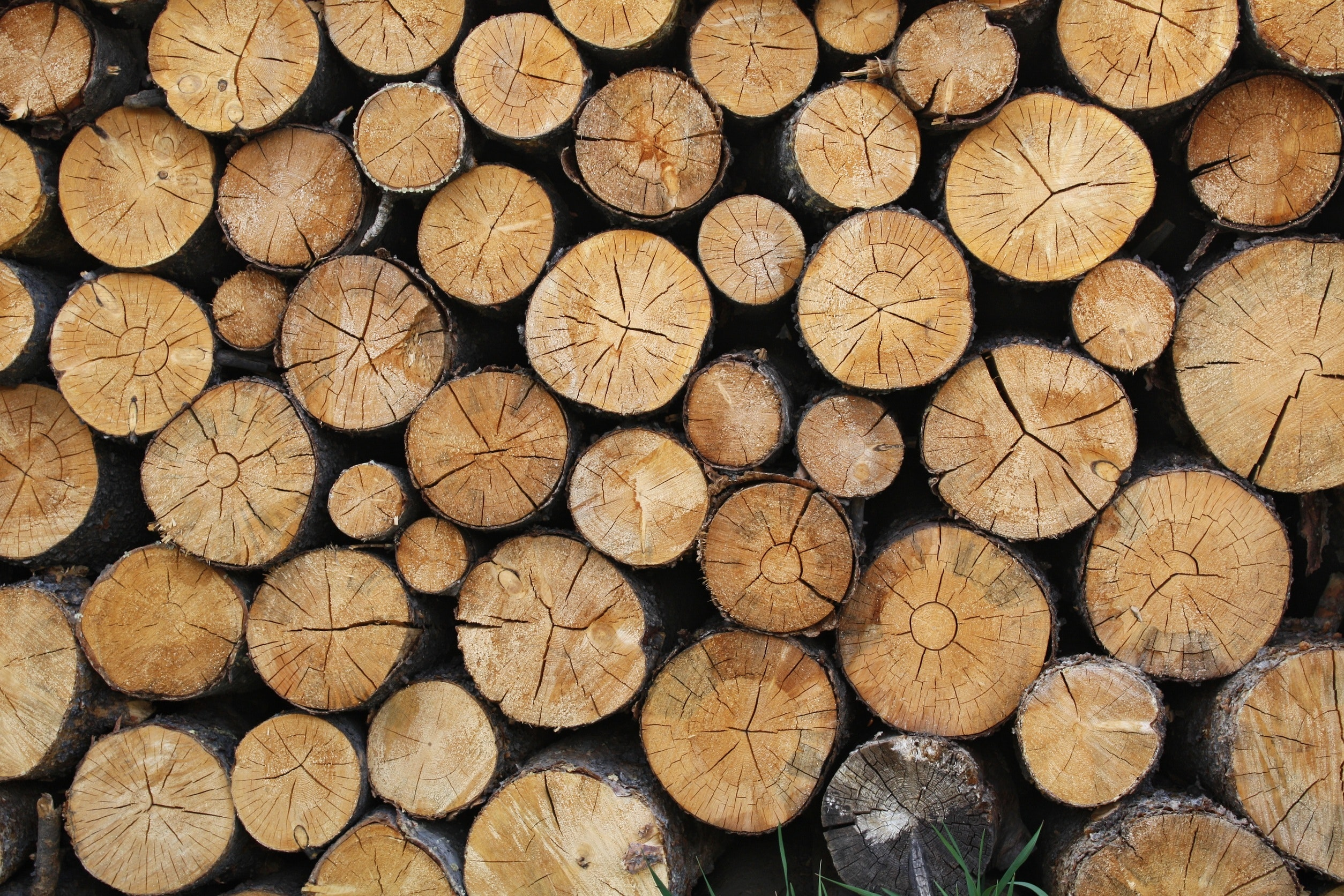UBCM passes resolutions on private land logging