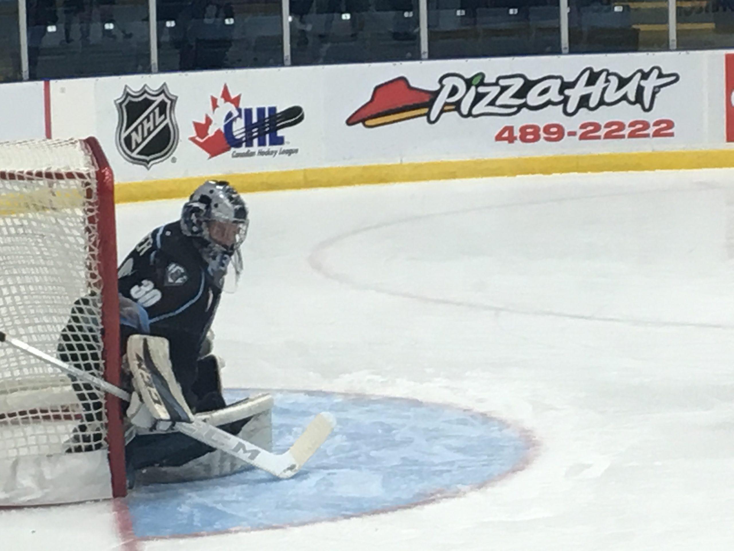 Edmonton takes 7-2 decision versus ICE