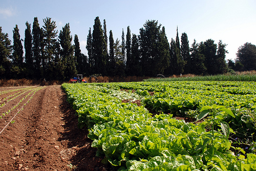 Agriculture work shop coming to Cranbrook