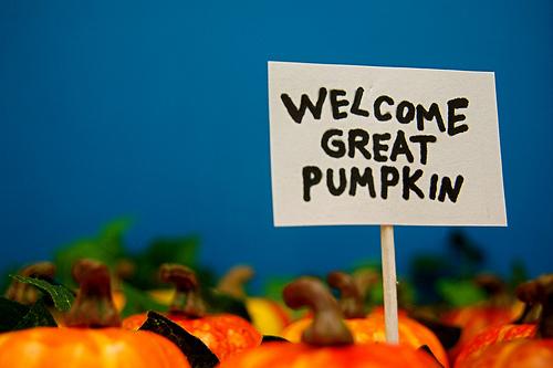 QUIZ: Halloween Ideas!