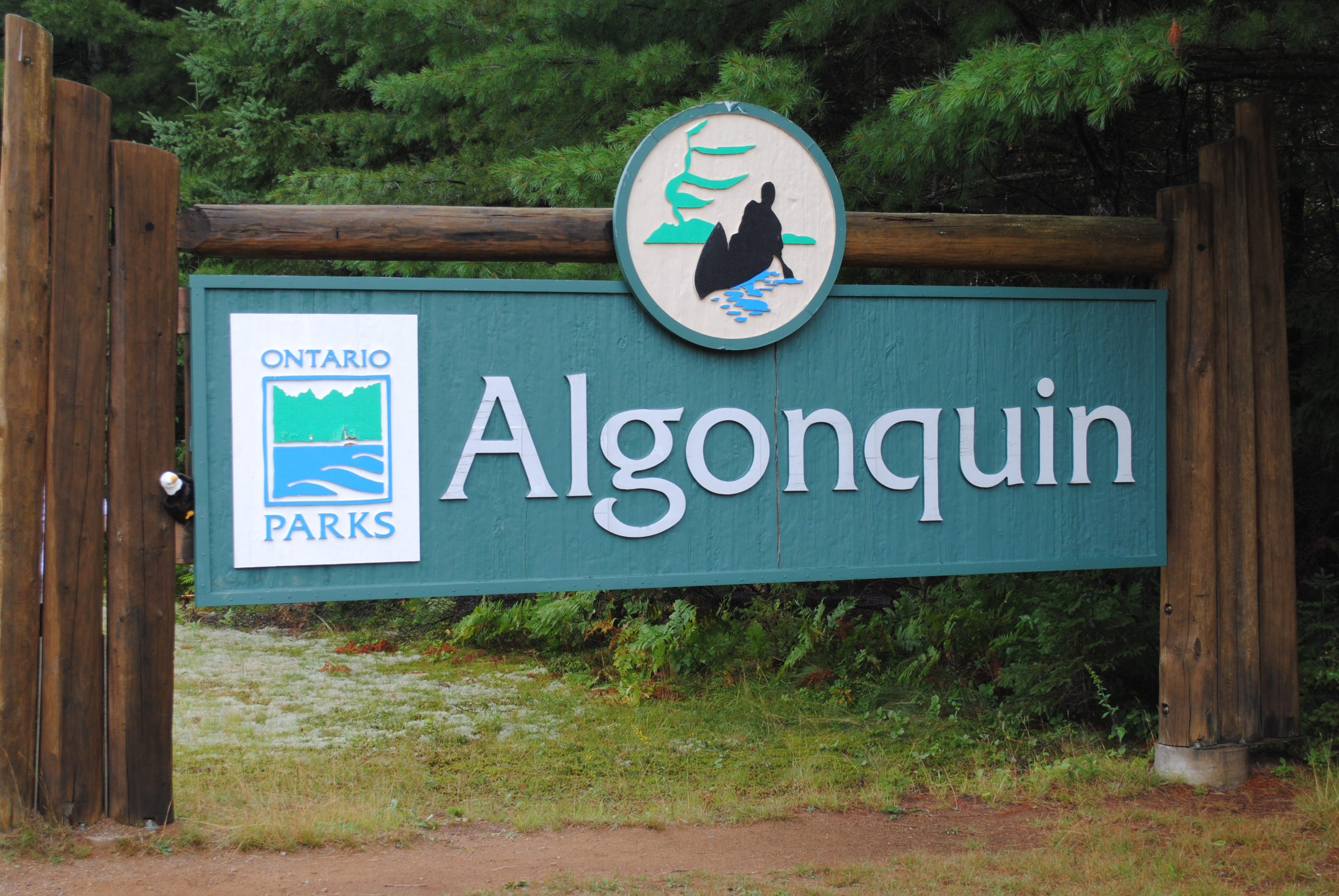 Algonquin Park welcomes visitors for free on Friday