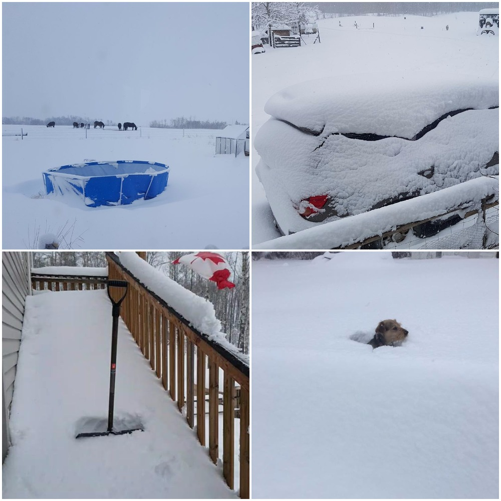 Easter weekend snowfall in Grande Prairie and area