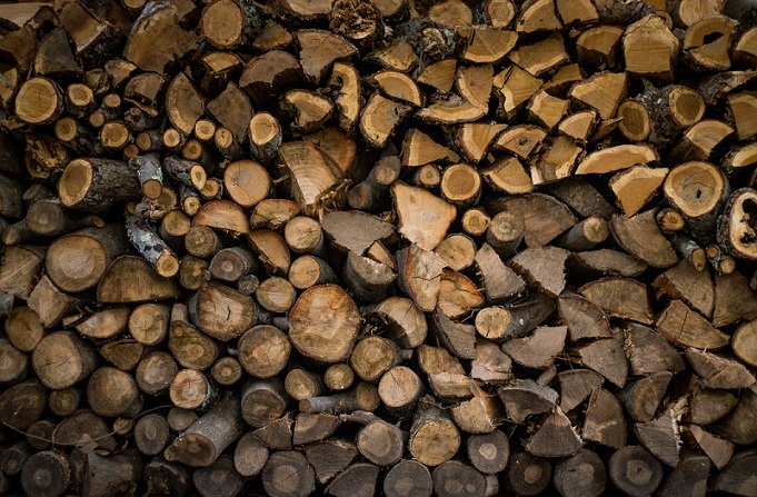 New softwood lumber duties not sitting well with Warkentin
