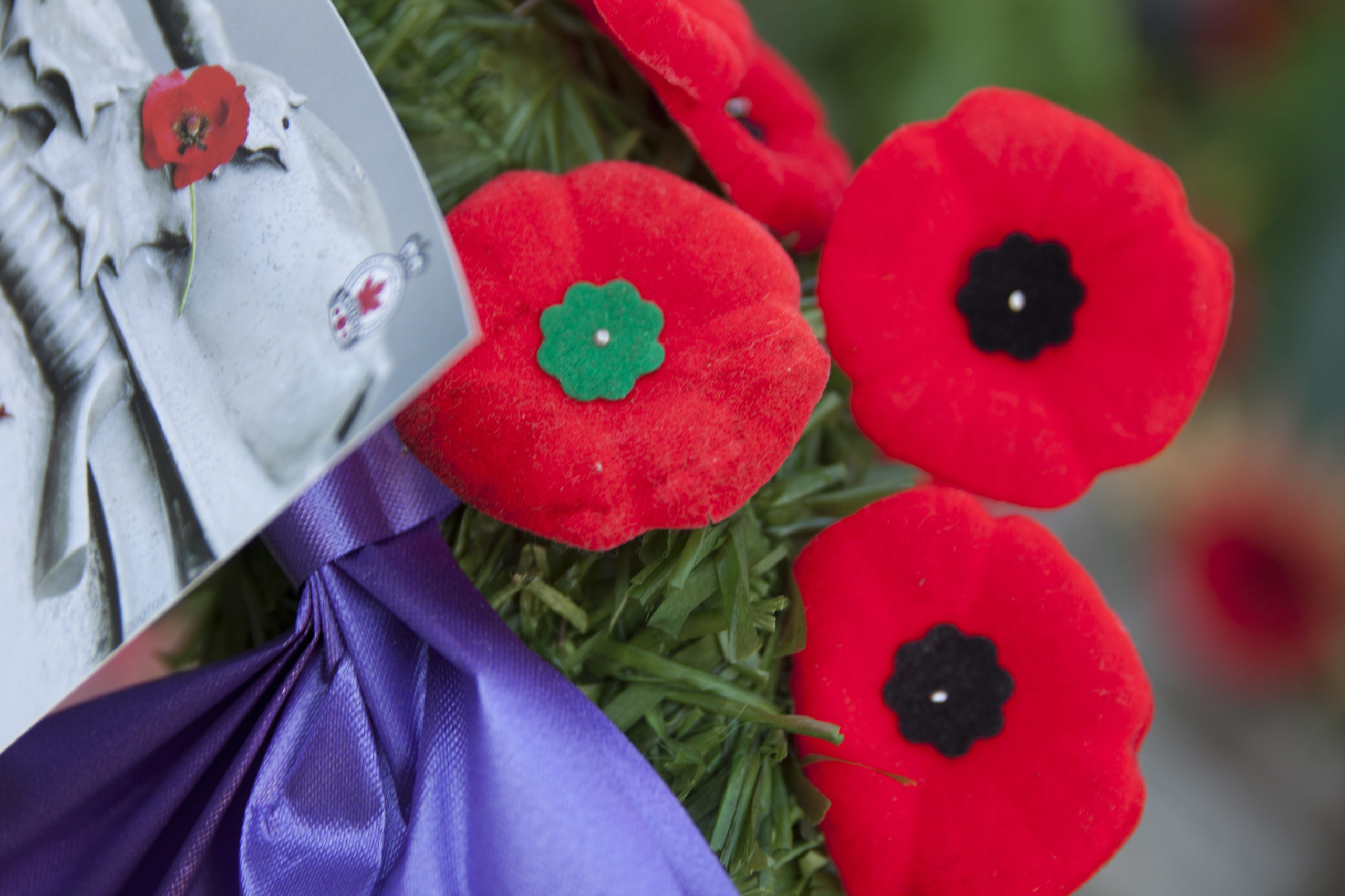 Lest We Forget – Remembrance Day Ceremony and Parade