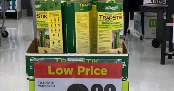 RETAILERS PULLING TRAPSTIK WASP TRAP FROM THEIR SHELVES BECAUSE BIRDS HAVE GOTTEN STUCK