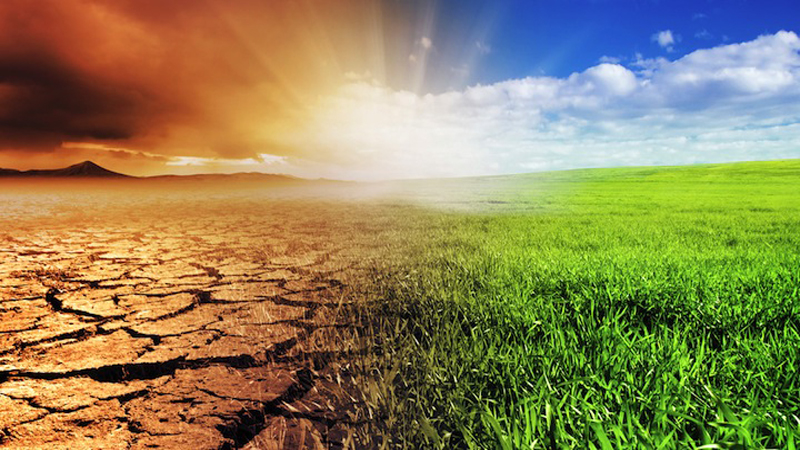 AGRICULTURE AND CLIMATE CHANGE