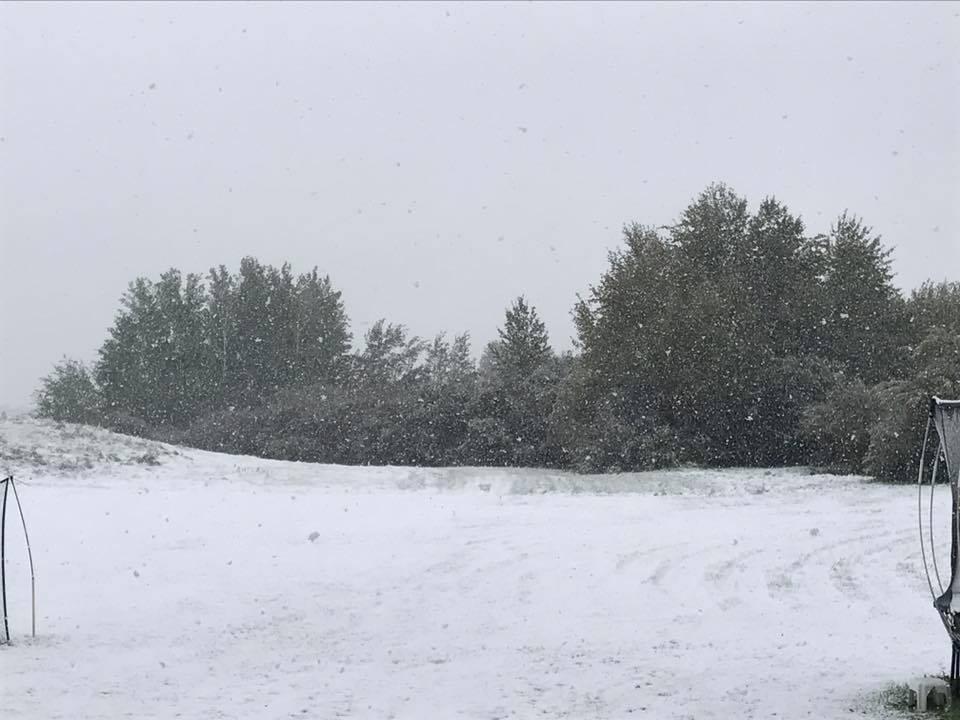 SEPTEMBER SNOW BRINGS.......DEFINITELY NOT MAY FLOWERS