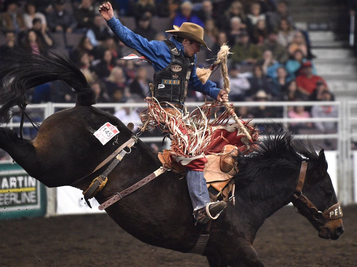 WHAT DOES THE FUTURE OF RODEO IN EDMONTON LOOK LIKE?