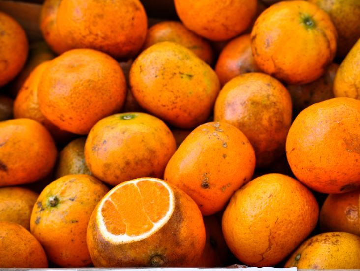 NO ONE'S THRILLED ABOUT THIS YEAR'S CHRISTMAS ORANGES