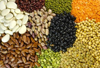 INDIA AND OUR PULSES