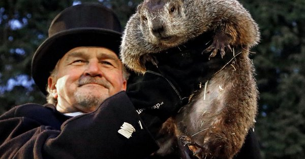 WHICH RODENTS SAW WHAT ON THIS GROUNDHOG DAY