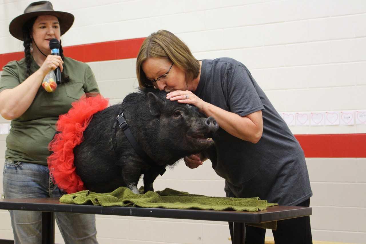 SMOOCHING THE PIG