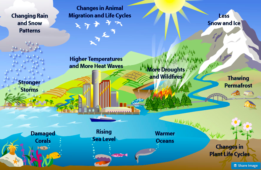SURVEY SAYS......A LOT OF ALBERTANS DONT BELIEVE IN GLOBAL WARMING