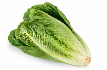 ONE DEATH IN THE U-S LINKED WITH E-COLI CONTAMINATED ROMAINE LETTUCE