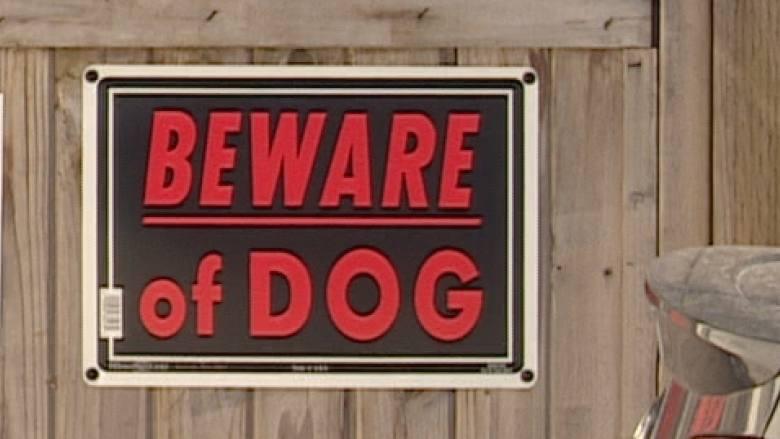 DOG ATTACK IN NORTHEAST EDMONTON LAST NIGHT