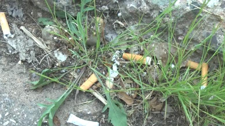 SMOKING BANNED AT SYLVAN LAKE
