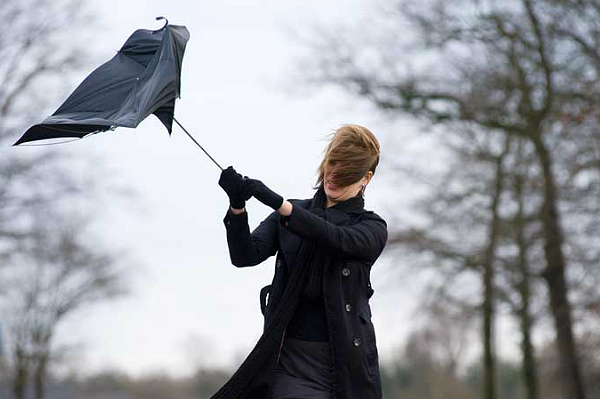 ANOTHER WINDY DAY AHEAD