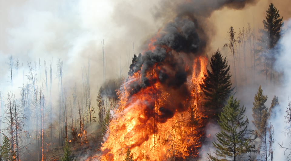 BC WILDFIRES RAGE ON