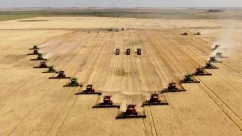 MORE THAN ONE HUNDRED VOLUNTEERS TURN OUT TO HELP HARVEST CROP AFTER FARMER DIES