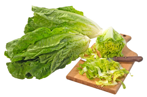 ROMAINE LETTUCE GROWN IN THE U-S TO BE TAGGED WITH CONSUMER PROTECTION LABELS
