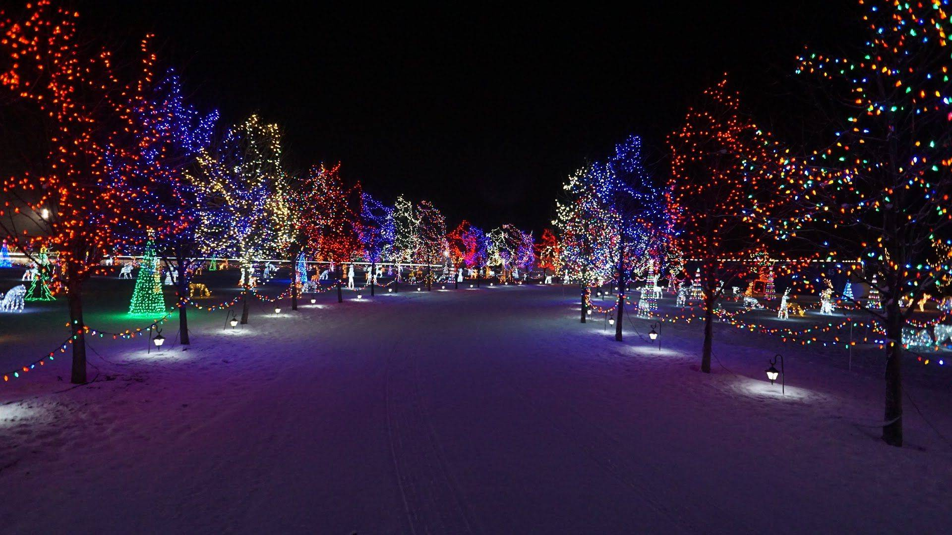 FINAL CALL FOR THE LEDUC COUNTRY LIGHTS