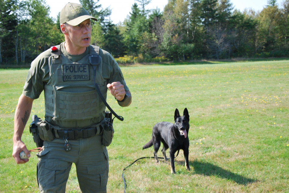 Jule is the newest RCMP dog in PEI