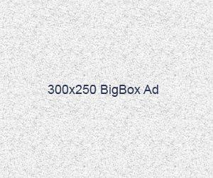 300x250bigboxspace