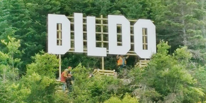 Town Urging Visitors to Stay Away from Dildo Sign