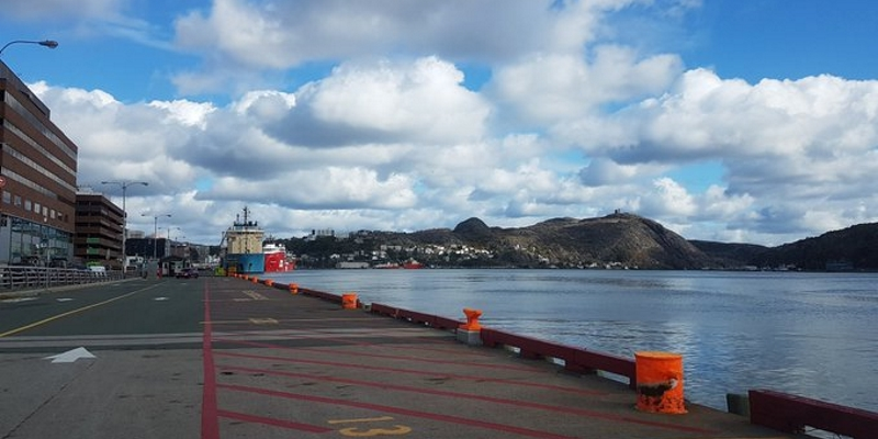 Naval Reserve Division Conducting Training Exercises in St. John's Harbour