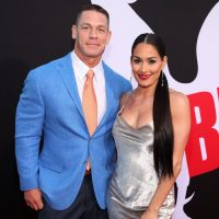 John Cena Wants Nikki Bella Back