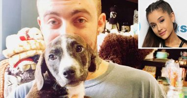 Ariana Grande Adopts Mac Miller's Puppy, Myron.