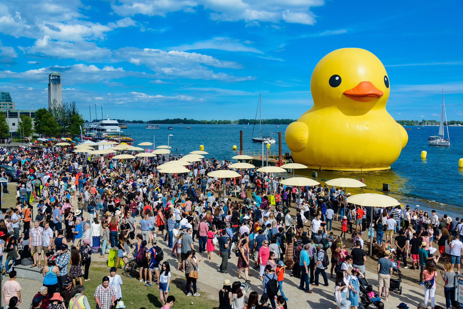 Paul Carriere, Louis B Hobson, Giant Rubber Duck, Ottawa Self Driving Cars