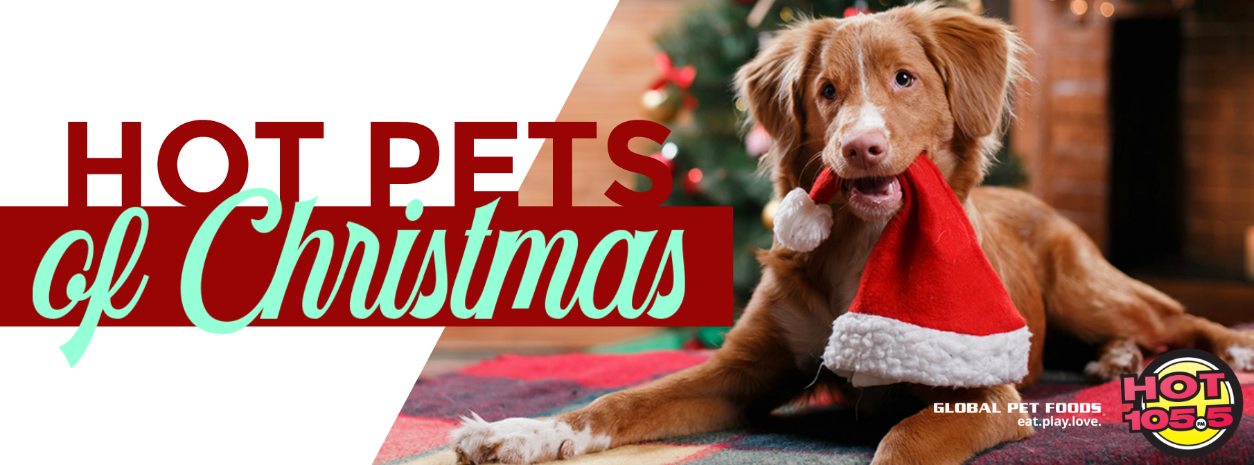 Hot Pets Of Christmas